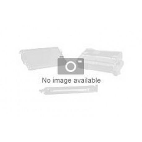 TANICA MAGENTA-CHIARO ULTRACHROME 110ML (C13T543600)