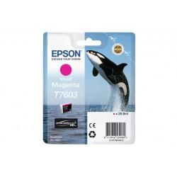 T76034010 CART.MAGENTA XL SC-P600 (C13T76034010)