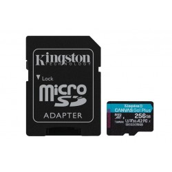 256GB MICROSDXC CANVAS GO PLUS (SDCG3/256GB)