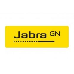 JABRA EVOLVE 20 ES UC DUO USB-C (4999-829-489)